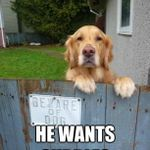 beware_of_dog_he_wants_540.jpg