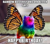 birthday rainbow unicorn butterfly kitty.png