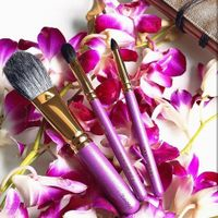 Orchid brushes.jpg
