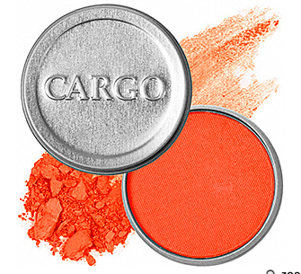 cargo.PNG
