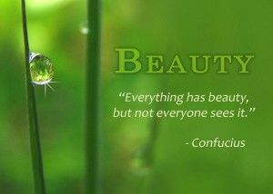 beauty-everything-has-beauty-but-not-everyone-sees-it-nature-quote-confucius.jpg