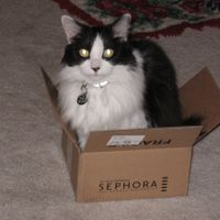 Isabella in Sephora Box.JPG