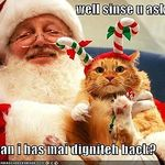 fd9cdc97878c6202_funny-pictures-cat-with-santa.xlarge.jpg