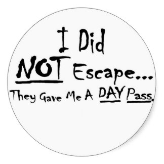 i_did_not_escape_they_gave_me_a_day_pass_stickers-rfe39ee644f8644ee999ae33e6392b188_v9wth_8byvr_324.jpg
