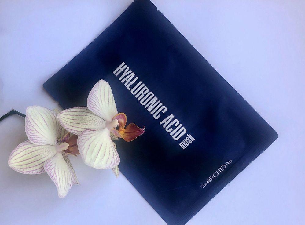 Orchid (2).jpeg