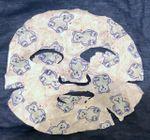 X - Target bear mask pic.jpg