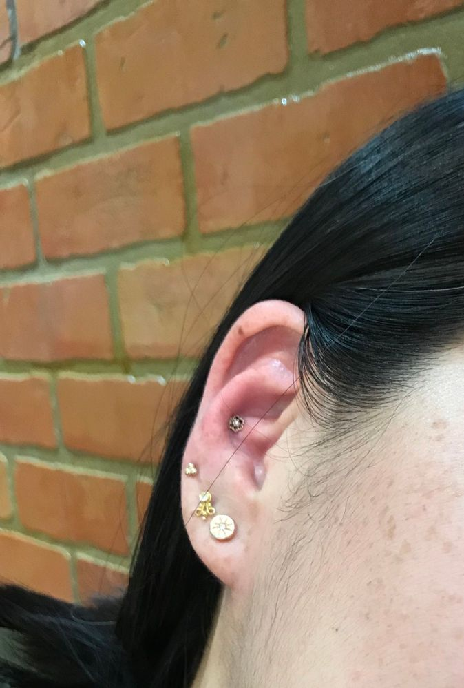 Conch pierced.