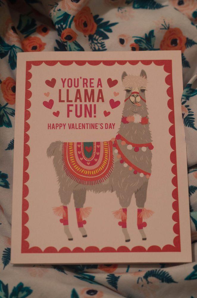 llama card.jpg