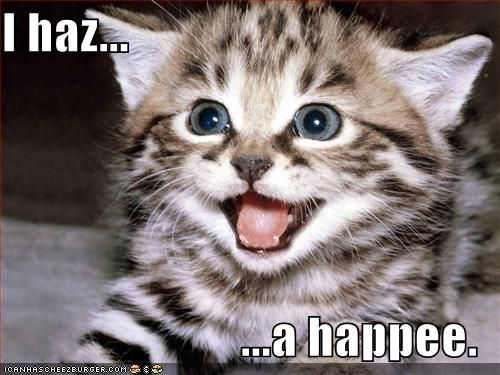 LOL-Cat-is-Happy.jpg