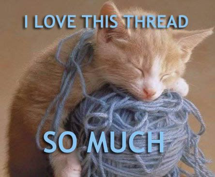 lol-cats_i-love-this-thread-so-much.jpg