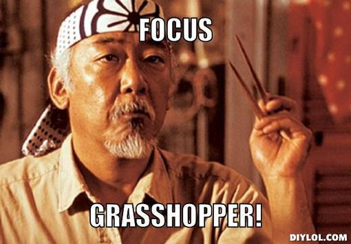 focusgrasshopper.jpg