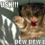 Ambush-Pew-Pew-Pew.jpg