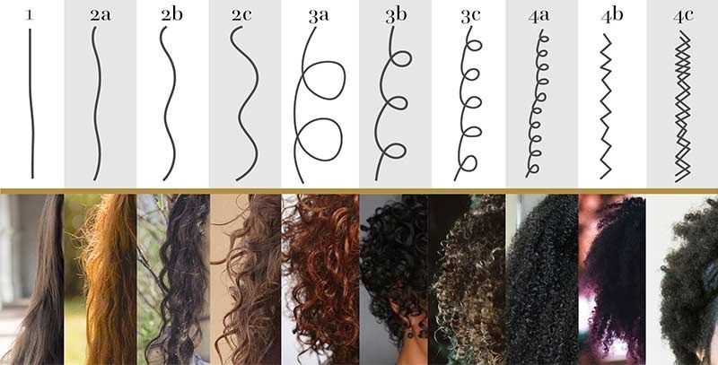 "An example of Andre Walker's ""hair type"" system."