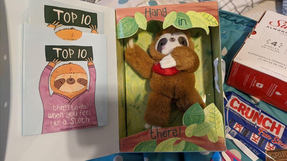 Cute Sloth Spro.jpg