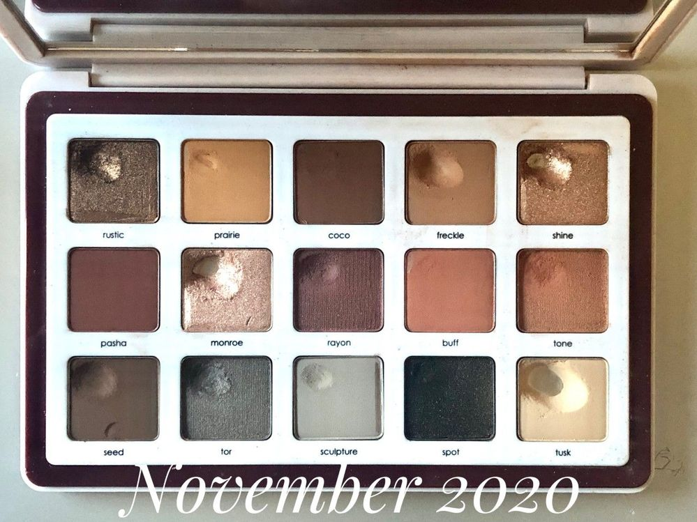 11.2020 Project Pan 2.jpg