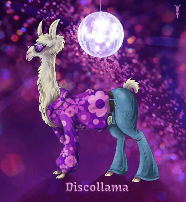 daily_llama_project___discollama_by_trollgirl-d6tugih.jpg