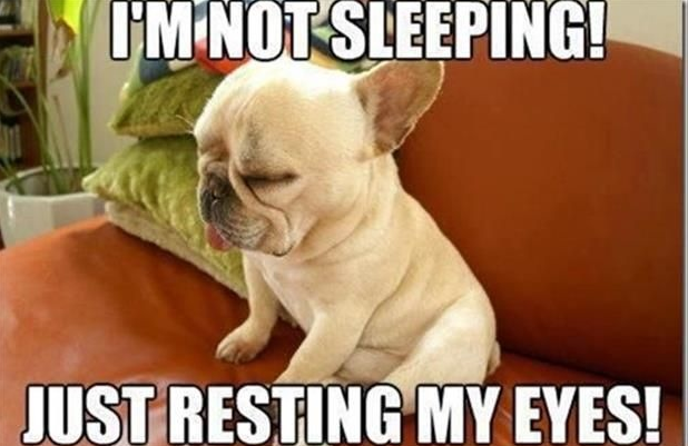 notsleeping.PNG