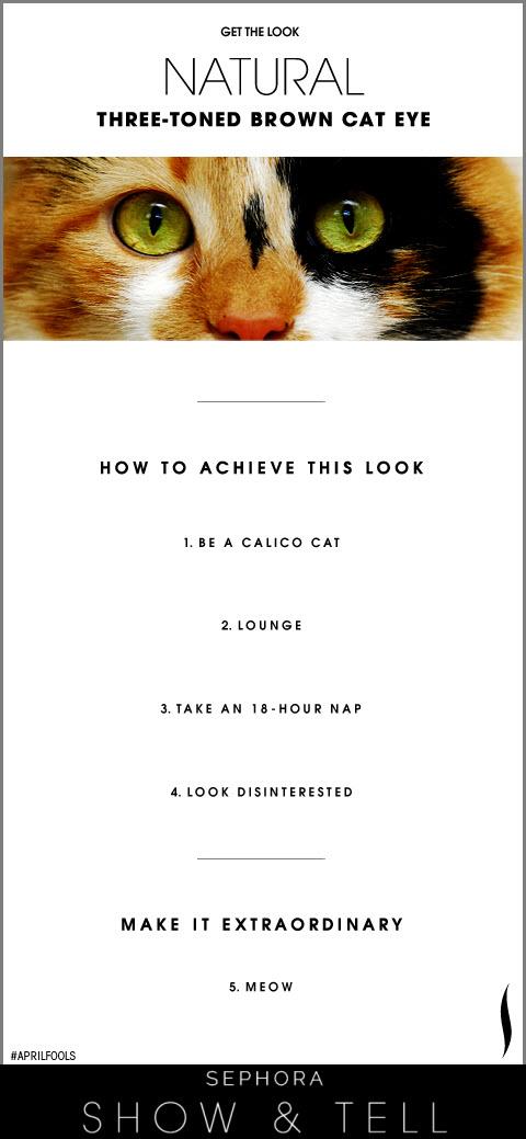 Cat Eye 4.1.jpg