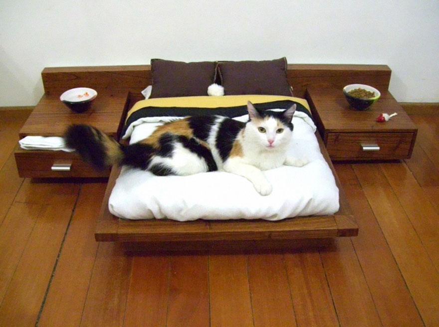 cat-furniture-111.jpg
