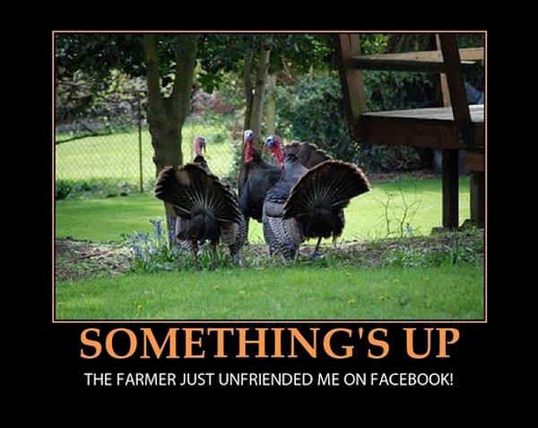 thanksgiving-meme-3.jpg