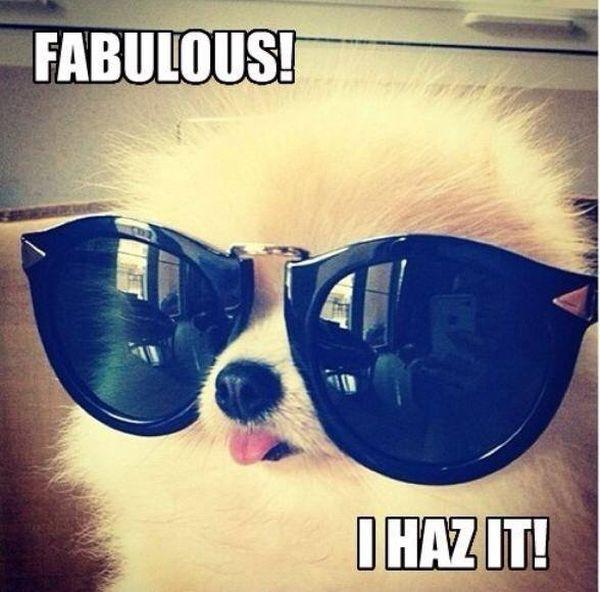 fabulousss.jpg