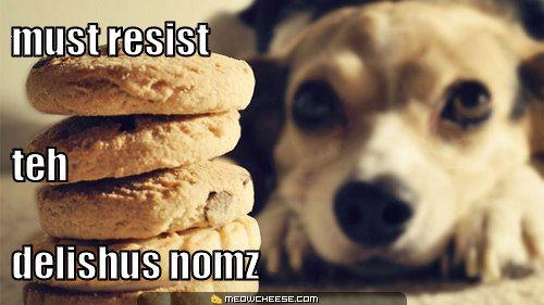 must-resist-teh-delishus-nomz.jpg