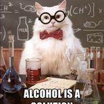 chemistry cat.jpg