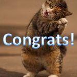 cat-congrats.JPG