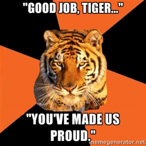 good job tiger.jpg