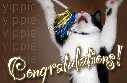 congrats_cat_448x293.jpg