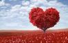 hearttree.png