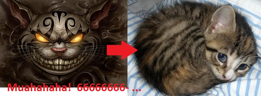 cat-cheshire-alice-wonderland-evil-1920x1080.jpg