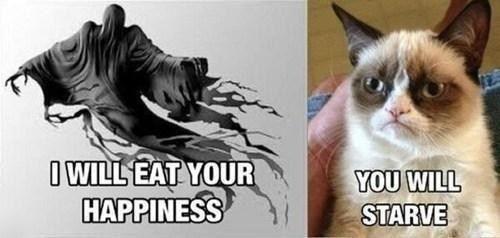 Dementors vs grumpy cat.jpg