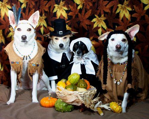 happy-thanksgiving-2008-2.jpg