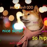 hipster doge.jpg