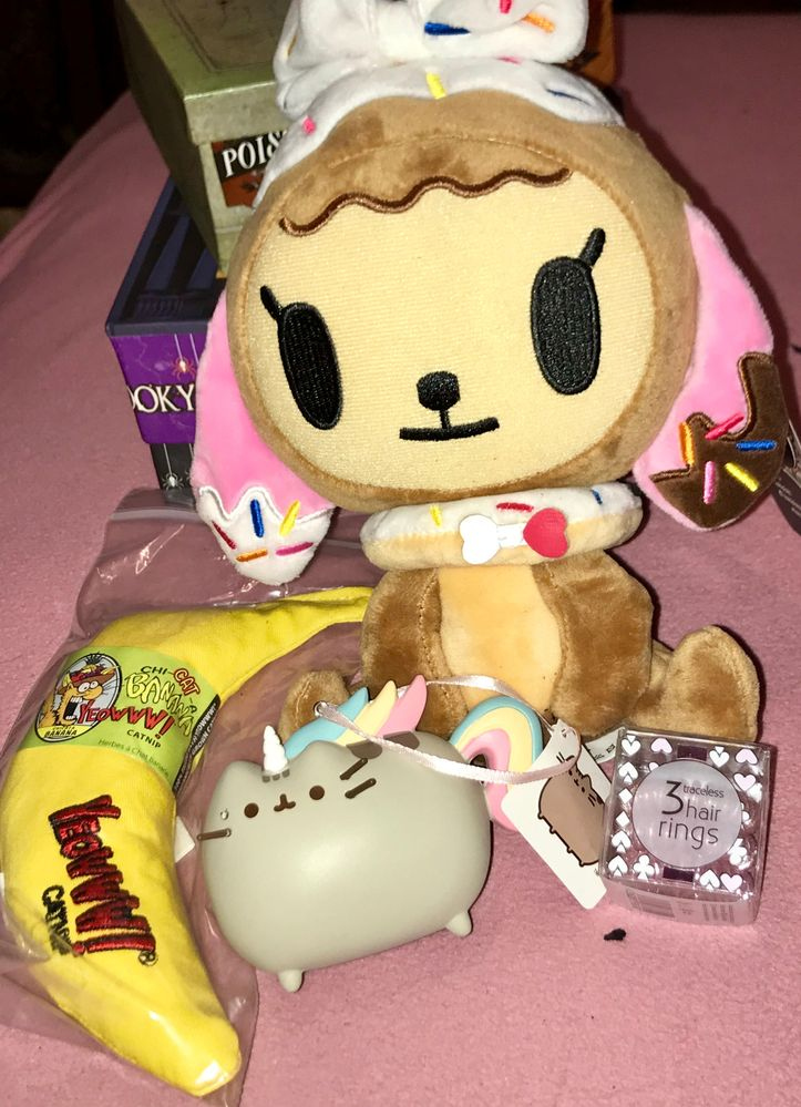 Lots of my elfster wishes granted including a tokidoki plush (now residing in my classroom), a limited edition invisibobble, a pusheen ornament, and Max the cat's favorite toy ever!!!