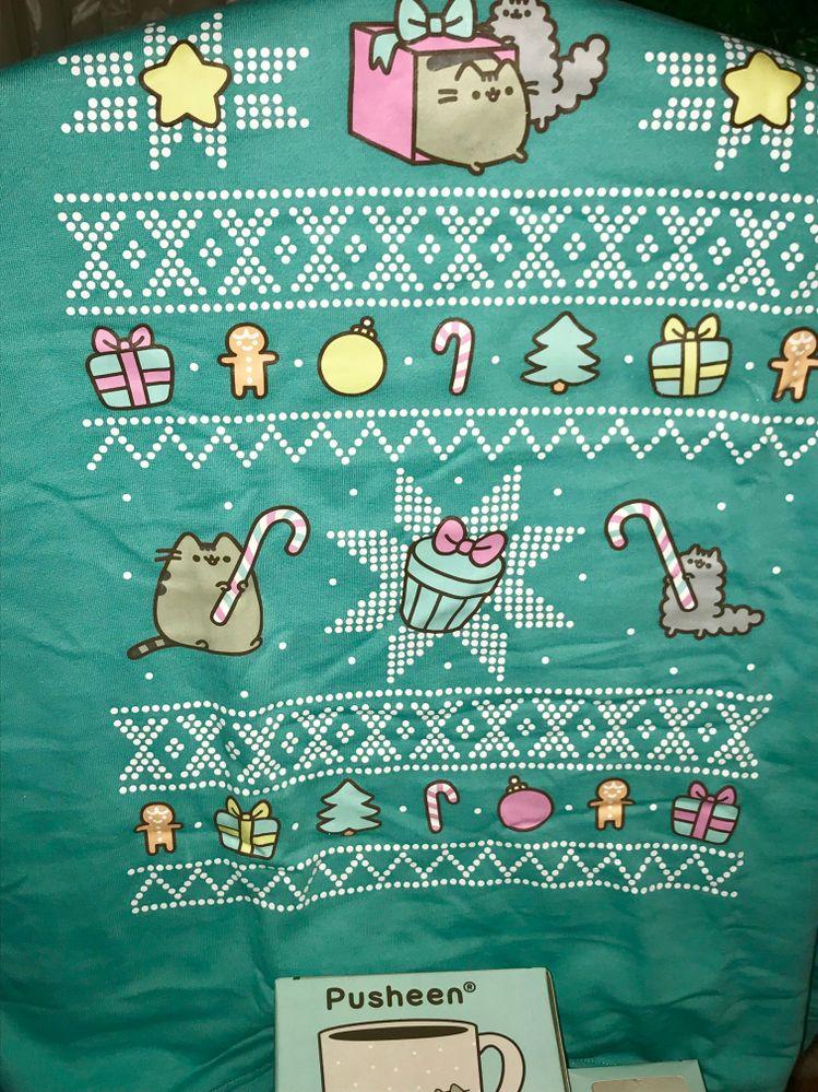 The amazing holiday sweatshirt! I of course wore it on Christmas day!!!