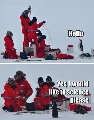 cute science penguin.jpg