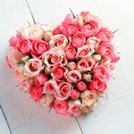 upload_8327519406593566309.jpg