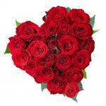 upload_4769893575454800434.jpg