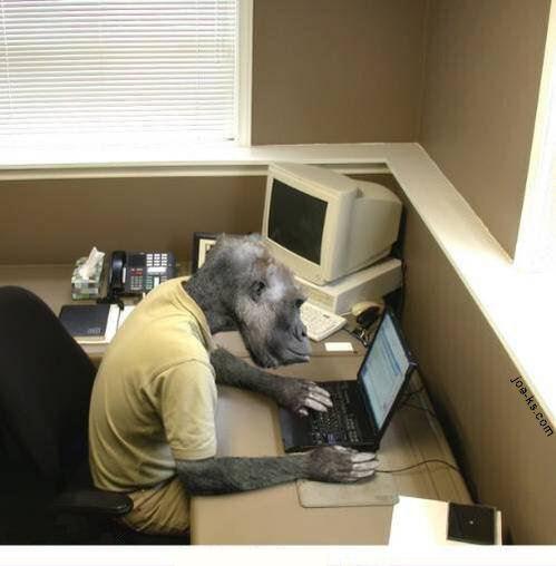computer_monkey.jpg