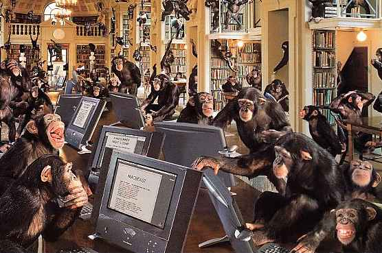 monkey_computer1.jpg